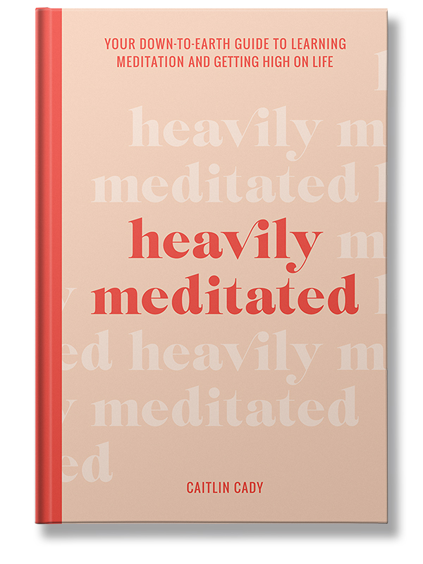 heavily meditated book cover small