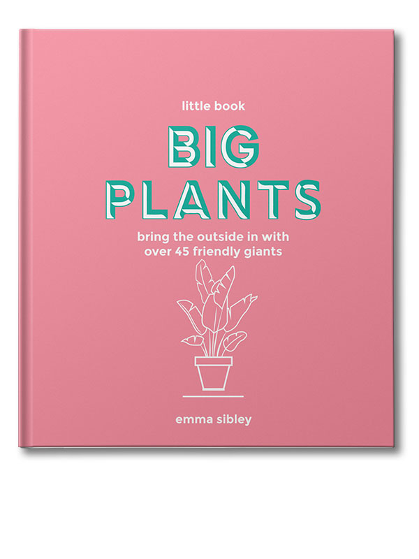 little book big plants 3d cover