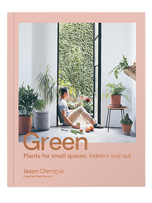 green small book cover