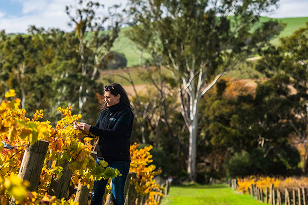 Winemaker Kerri Thompson of Wines by KT