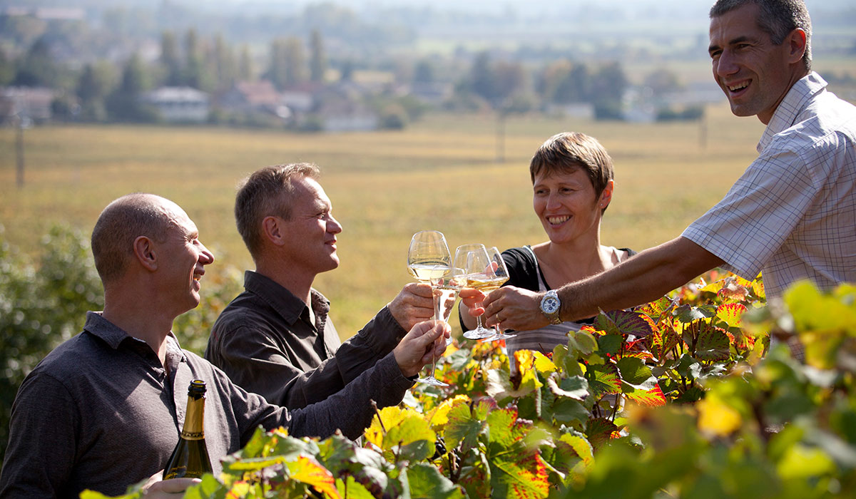 Four people tasting wine in a Burgundy vineyard