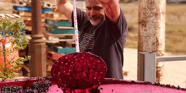 Plunging down the cap on shiraz wine