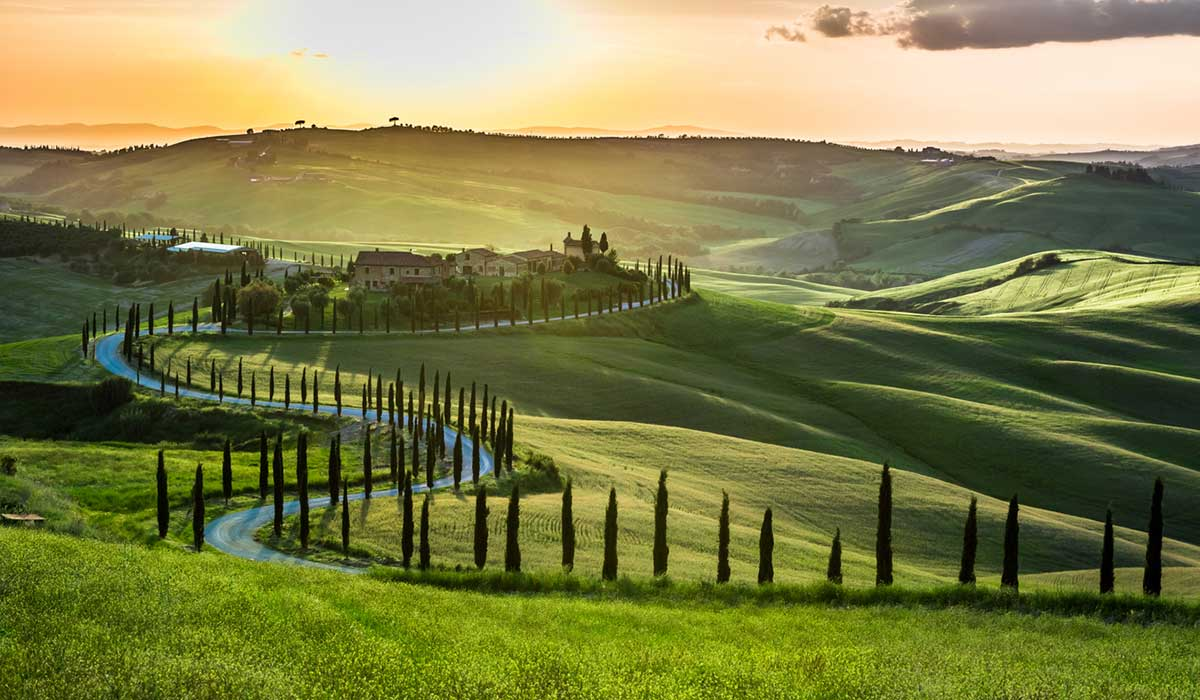 A cypress-lined drive in Tuscany, Italy