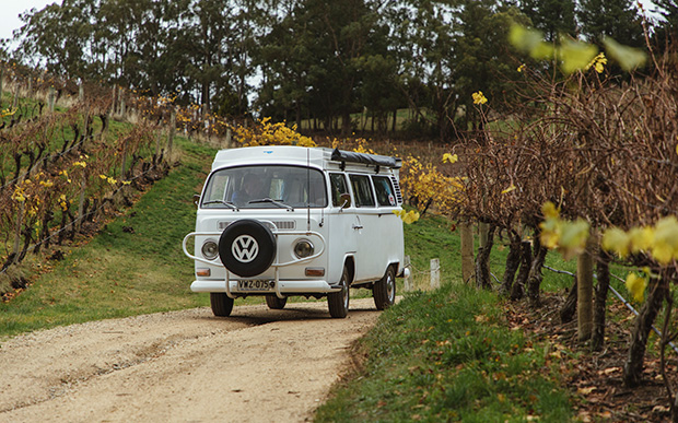 Volkswagen driving through the autumn vines in the Adelaide Hills