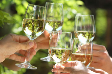 Sauvignon Blanc Halliday Wine Companion Awards Varietal Winners