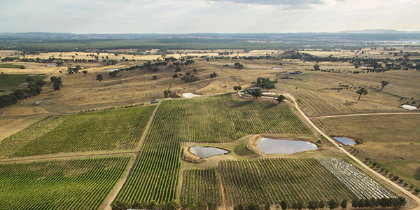 Heathcote vineyard bird's eye view