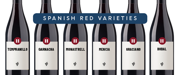 Spanish red wines infographic