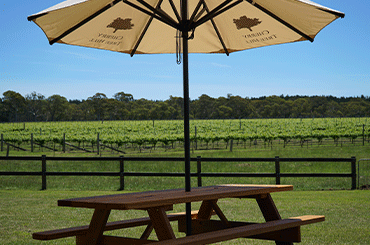 Cherry Tree Hill Cellar Door