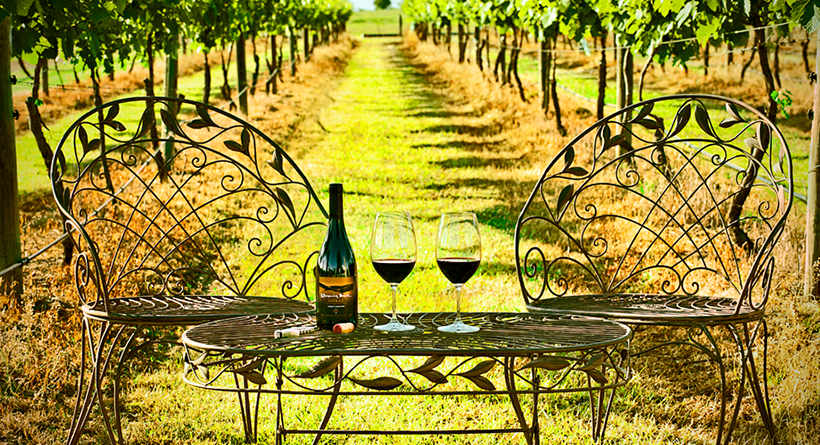 Whispering Brook wines and table setting in the vines