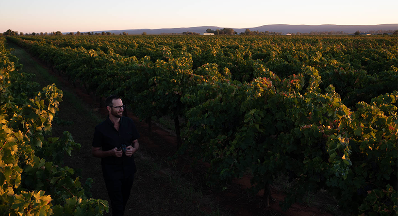 Yarran winemaker in vineyard