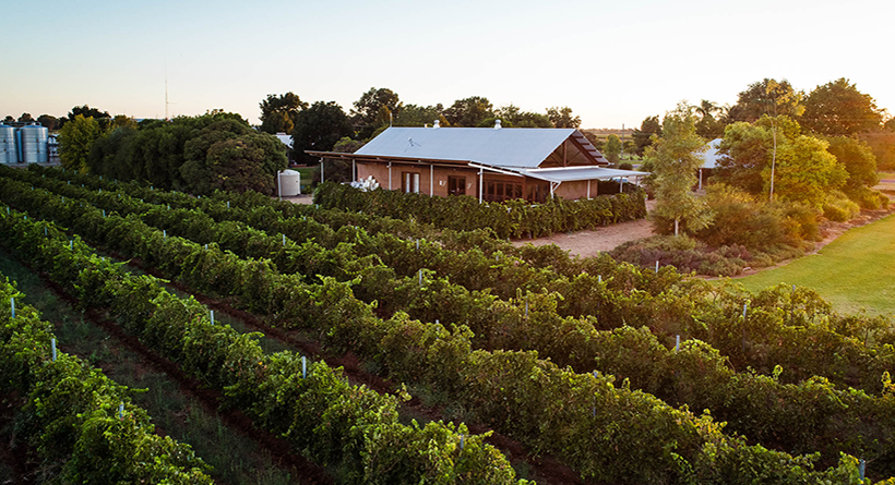 Yarran Wines Vineyard