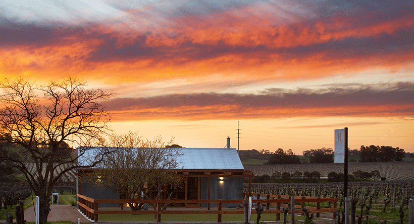 Hayes Family Wines Sunset and Cellar Door