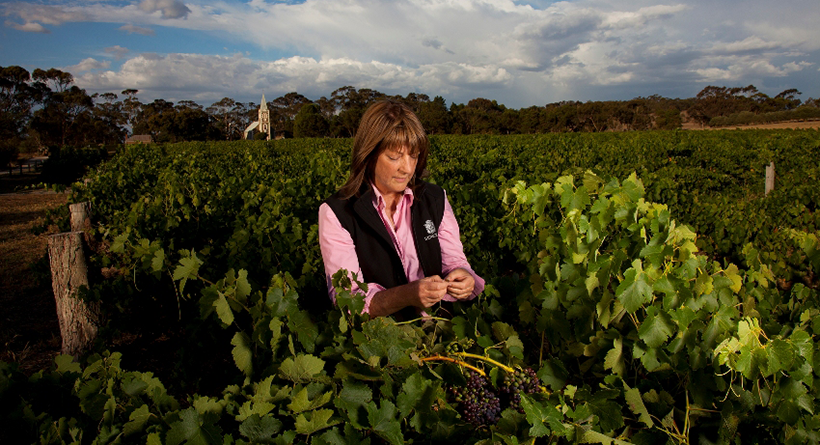 Henschke | Halliday Wine Companion