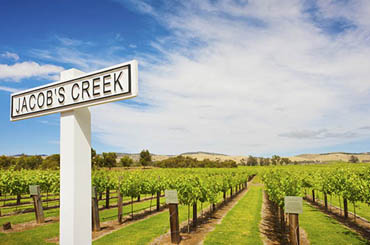 Jacobs Creek Winery