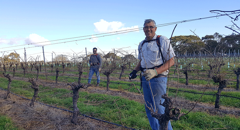 Paracombe Wines Winemakers