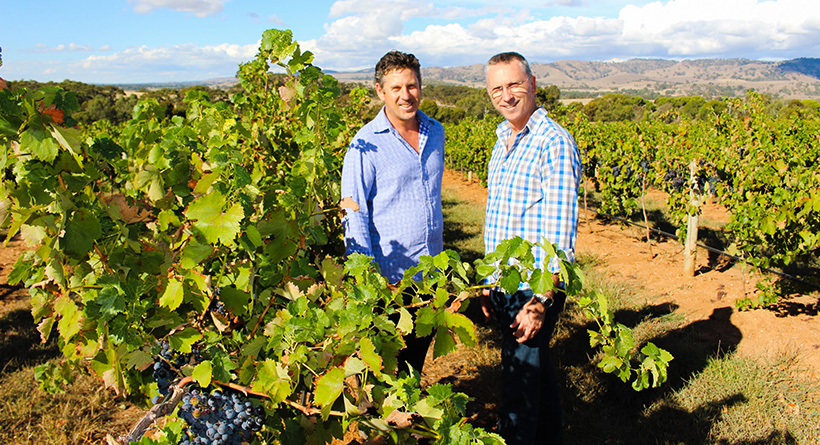 Purple Hands Wines | Halliday Wine Companion