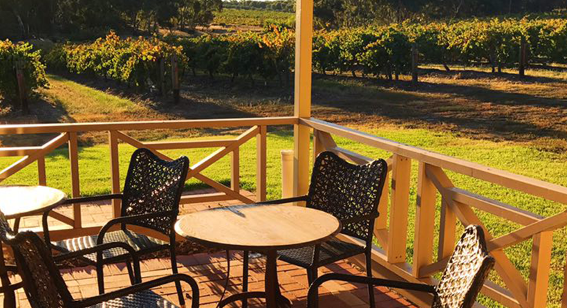 Schubert Estate chairs in the sun and vineyard in the background