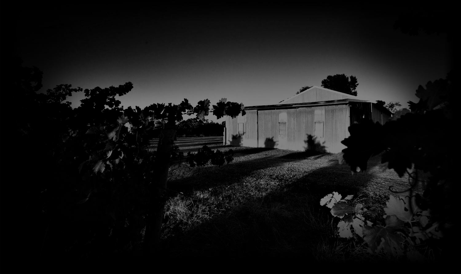 Moody Winery Image