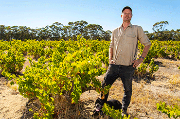 Spinifex Winemaker