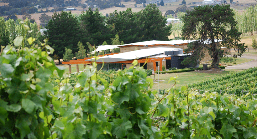 Home Hill Vineyard