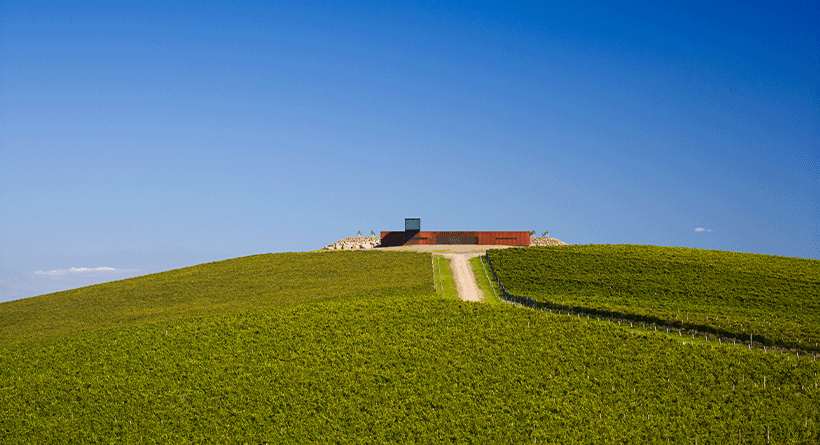 Denton Viewhill Vineyard Cellar Door