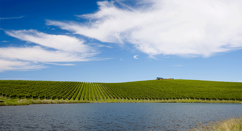 Denton Viewhill Vineyard Lake