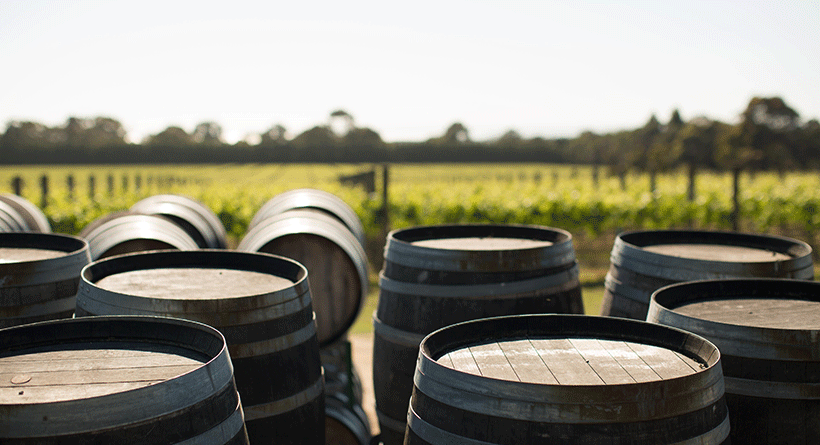 Ten Minutes by Tractor Vineyard Barrels