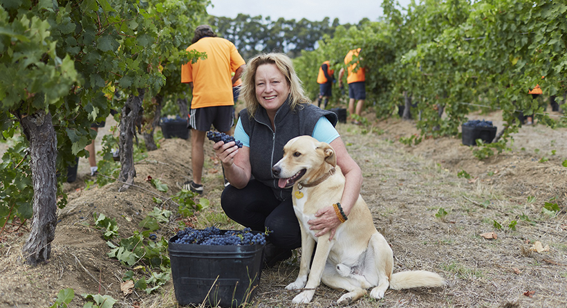 Vanya of Cullen Wines and a dog in the vineyard