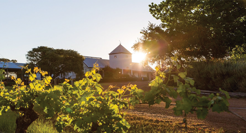 Hay Shed Hill Margaret River cellar door | Halliday Wine Companion
