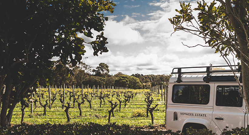 Voyager Estate Vines and Truck